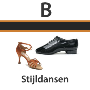 Dansschool-Dance-Fit-stijldansen-beginners